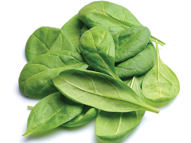 Image of spinach leaves